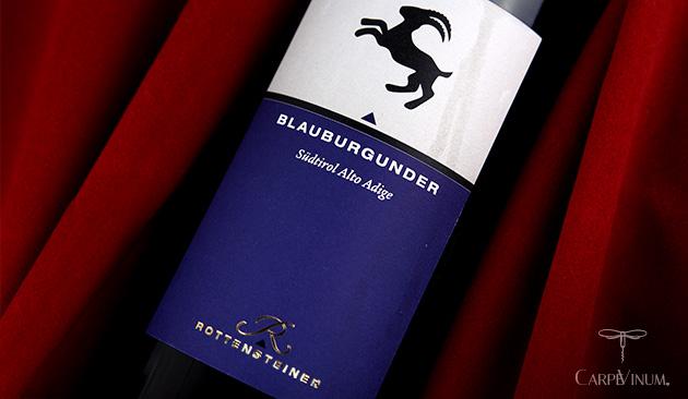 Pinot Nero Blauburgunder 2013 cover