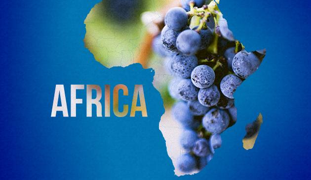 vino in Africa
