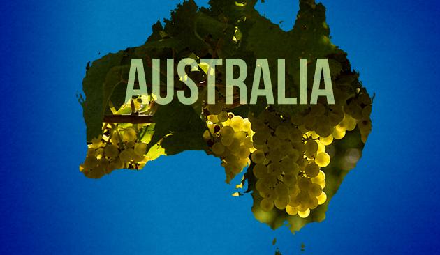 vino in Australia