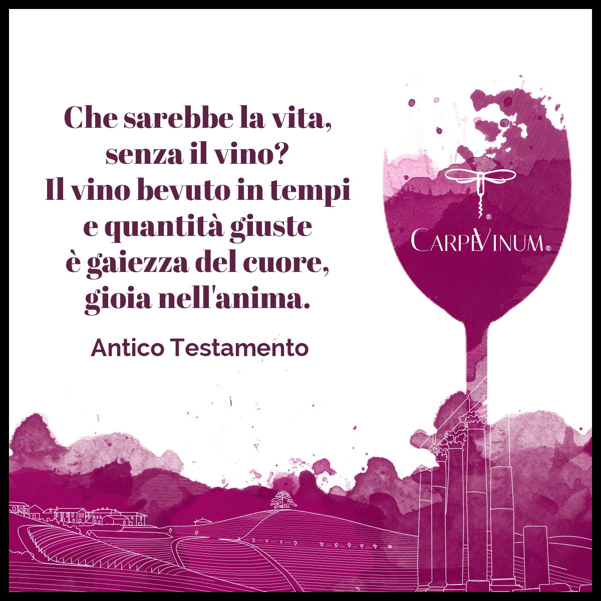 citazione Antico Testamento - Che sarebbe la vita senza vino?